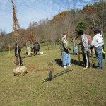 2014 Fall Planting